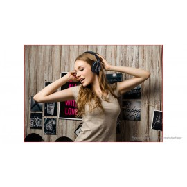V33 Foldable Bluetooth V5.0 Heavy Bass Stereo Head..